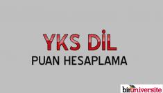 YKS Dil Puanınızı Hesaplayın